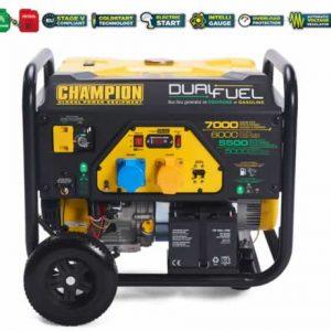 generator-dual-fuel-7000-watts-CPG7500E2-DF
