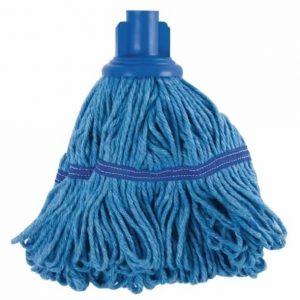 blue mophead